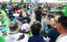 마포나루 새우젓 축제